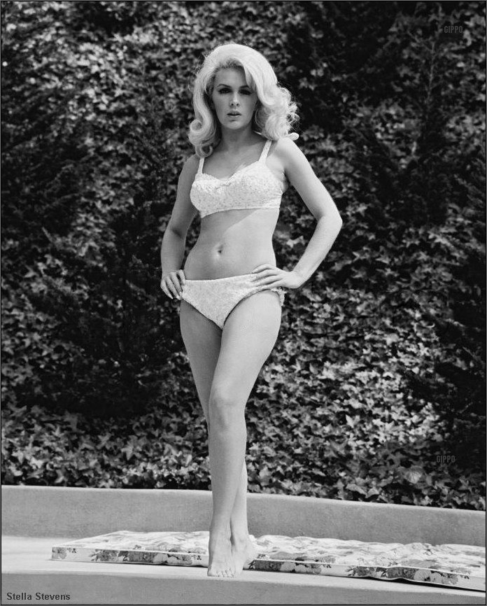 Inger stevens bra photos for